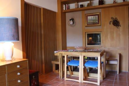 Grande appartamento 12 posti letto - Apartamento