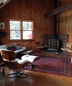 Mid-Century Modern Cabin - Ház