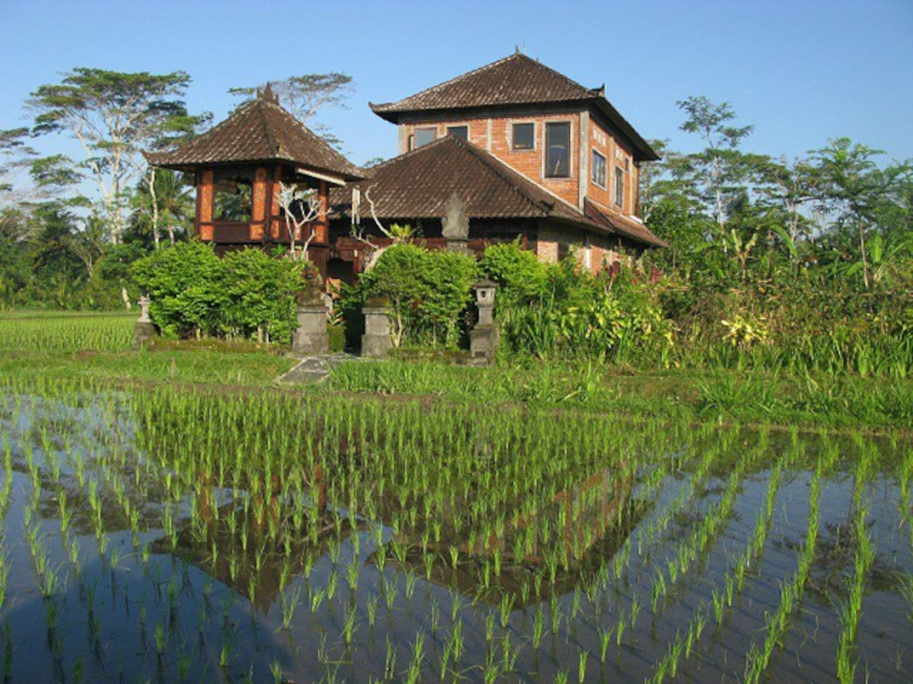 Welcome to Swallow Guesthouse in the REAL Bali