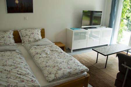 Schöne Einzimmer Wohnung mit Aussicht - Balsthal