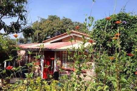 Casita en jardin grande, tranquilo - Tepoztlán - Rumah