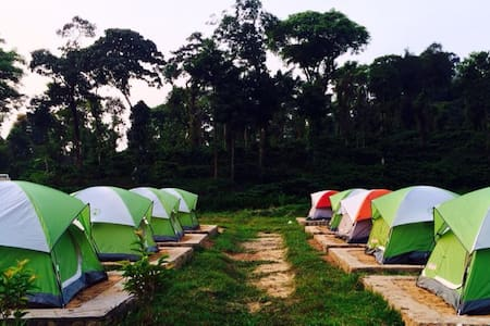 Camp out in remote Coorg - Tent
