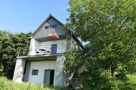 Charming house on winehill at Balaton w great view - Huis