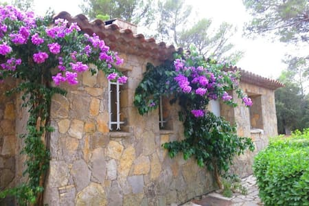 Spacious Provencial Home with pool - Taradeau - Casa