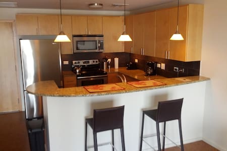 NEW! Sparkling condo overlooks downtown and campus - Champaign - Appartement