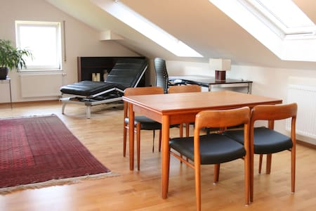bright friendly roofstudio 47 sqm - Würzburg - Apartamento