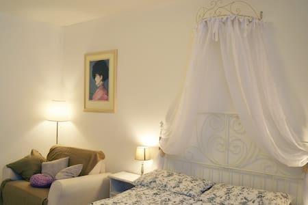 Ostiense apartment - Rome - Apartment