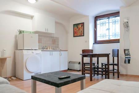 Strahinjica Bana Belgrade Apartment - Beograd