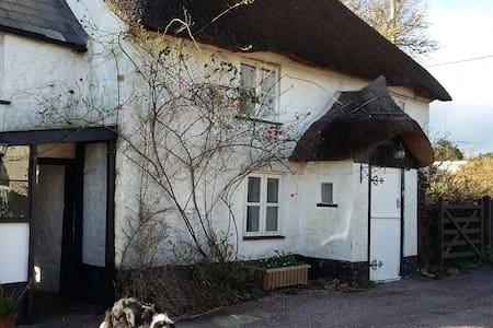 Pretty Picturesque Thatched Cottage - Cotleigh - House