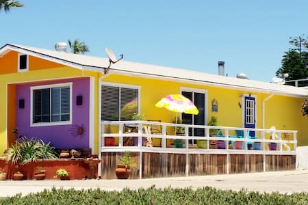 Sunny Oceanfront Beach Cottage 2+2! - Dom