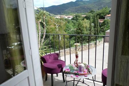 Room with nice views on Pyrénées !