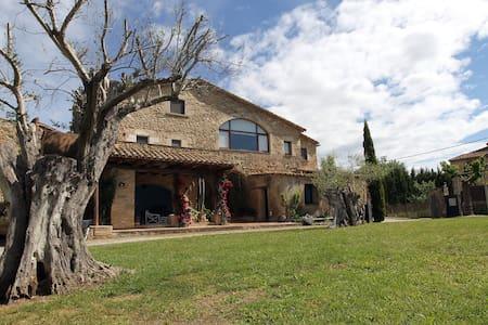 Casa del siglo XVIII para 20 personas, piscina - Saus, Camallera i Llampaies - Casa