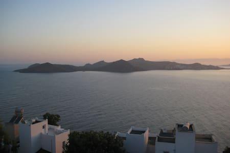 Spectacular Sea View in Dream Villa