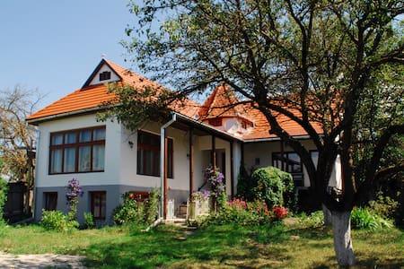 Transylvania Guest House - Bârzava