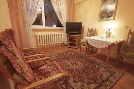 Classic apartment near Warsaw 2 - Apartemen
