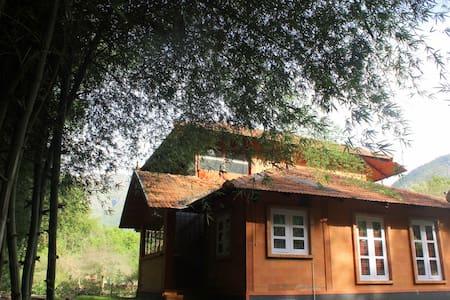 Artistic Kerala style house - Ház