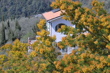 Rooms with a view - Alps & Riviera - Bed & Breakfast