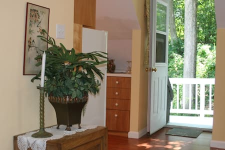 Studio Apt in detached building w/total privacy - Apartment