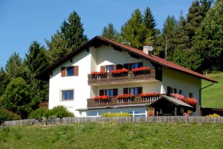 Garni Waldpeter - bed & breakfast near Bolzano! - Bed & Breakfast