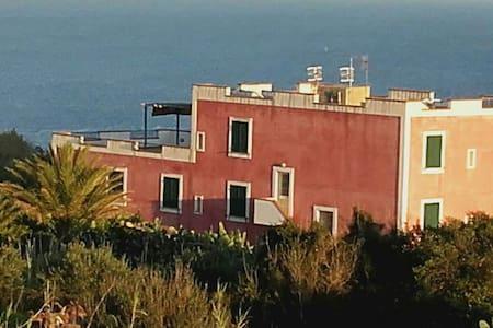 CASA DI PALMA, VILLA STEFANIA.bilo2 - Ventotene - House