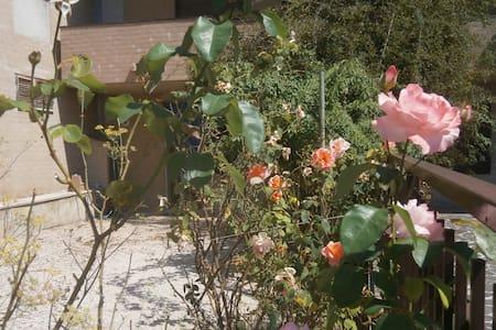 Monolocale con giardino in Assisi (dintorni). - San Vitale - Apartment