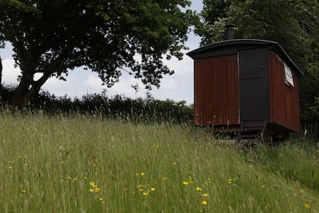 Y Barcud ( Red Kite)  Vintage shepherds hut. - Other