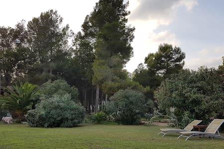 VILLA PARA GRUPOS EN PLENA NATURALEZA - L'Aleixar - House