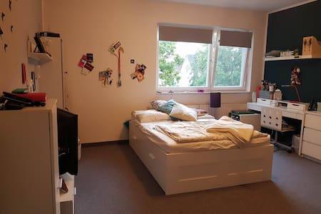 Gemütliche, helle 1-Zimmerwohnung - Berlino - Appartamento