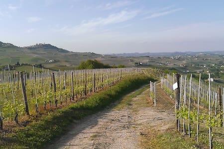 Romantico bilocale tra le vigne - Barolo