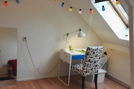 Room close to the Amsterdam city center ! - Ház