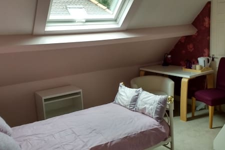 Charming Edwardian home single room - Sheffield - Hus