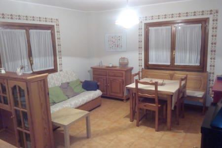Espaciosa habitación-salón-comedor con estufa leña - Apartment