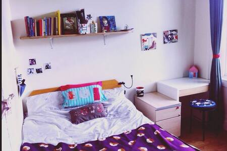 Little, cosy bedroom in Rathmines - Rathmines - Departamento