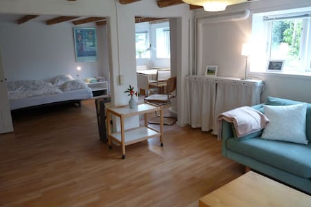 Bright 45 m2 flat (basement) close to city centre - Aarhus - Villa