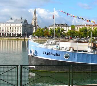 "Péniche ""DJÉBELLE"" - Chambre RIAD - Bayonne - Boat"