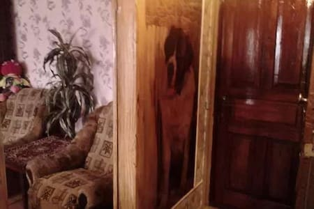 уютная квартира PAVLOGRAD - Pavlohrad - Wohnung