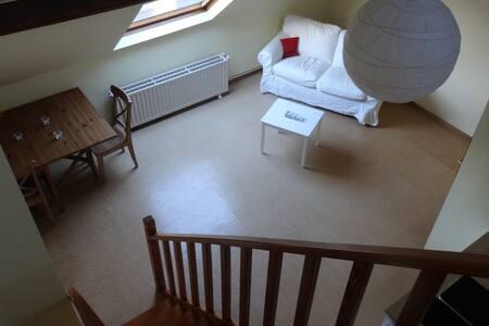 Chambre de 40m² avec mezzanine à louer prox OTAN - Rumah