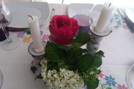 Cene a tema per gli ospiti - caselle torinese