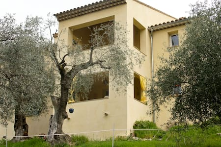 L'oliveraie. The olive grove. - House
