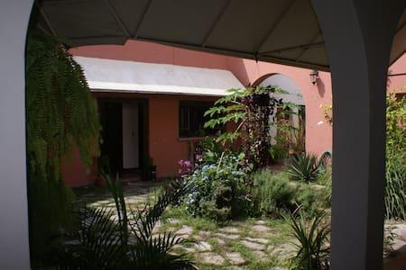 casa en el centro de la ciudad - Colima - House