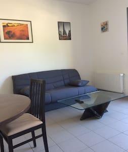 Logement proche d'Annecy et Genève - Injoux-Génissiat - Flat