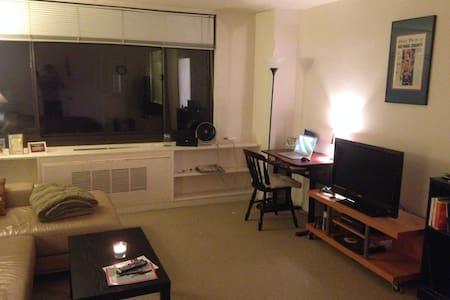 Studio in Rosslyn, VA - Arlington - Apartment