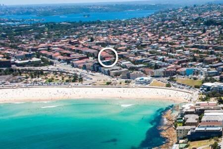 Bondi Beach - sand steps away - Bondi Beach - Apartment