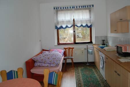 Ferienwohnung mit Küche + Wannenbad - Appartement