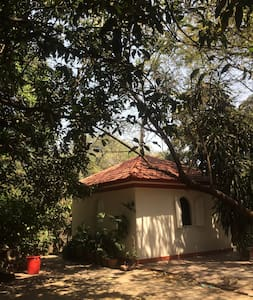 Studio Room in a tranquil location - Pune