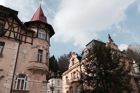 Historic villa in central city - Apartment