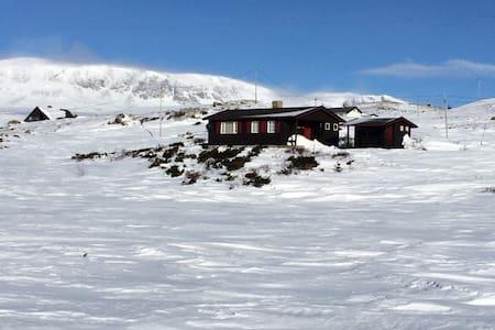 Ekte hytte på Ustaoset - Ustaoset