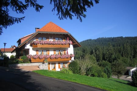 Panoramablick Schluchsee Whg. 1 - Daire