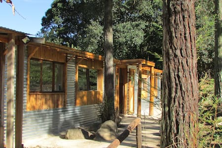 Evergreen Cabin - Howick
