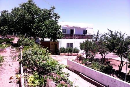 Dos habitaciones en casa de campo. - Santa Cruz de Tenerife - Casa